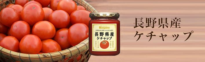 長野県産ケチャップ 240g
